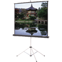 Da-Lite Picture King Projection Screen